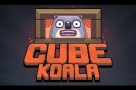 CubeKoala-Feature